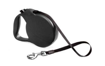The Retractable Leash Debate